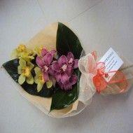 Bouquets en cymbidium. 65.000 85.000 105.000 190x190 Tienda