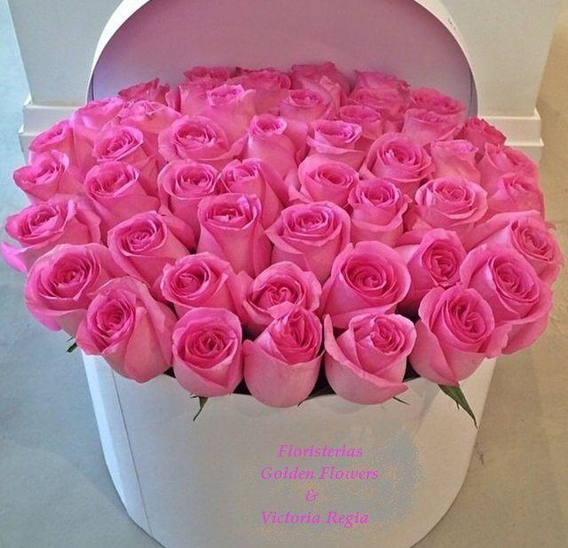 Caja Rosas CF 12