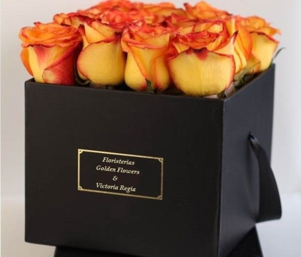 Caja Rosas CF 13