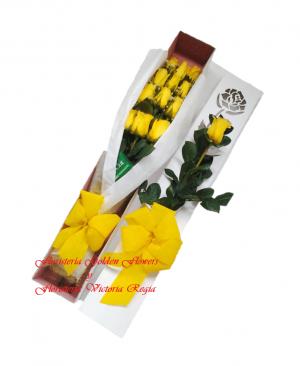 Caja X 12 rosas 1 300x366 Tienda