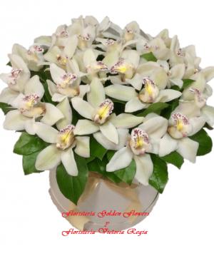 Caja orquídeas 300x366 Tienda