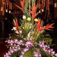 Heliconias dendrobium blanco y lila. 150.000 180.000 230.000 190x190 Tienda