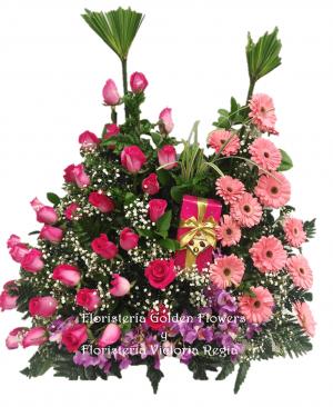 Imagen48 1 300x366 Tienda