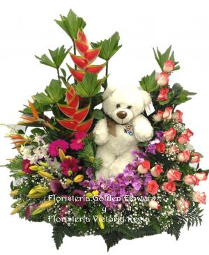 Imagen50 1 300x366 Tienda