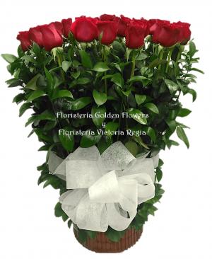 Imagen65 300x366 Tienda