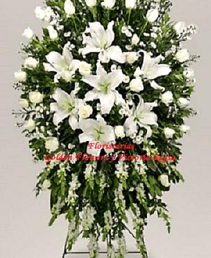 Imagen80 300x366 Tienda