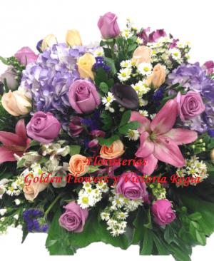 Imagen81 300x366 Tienda