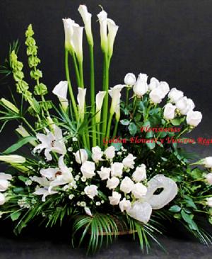 Imagen84 1 300x366 Tienda