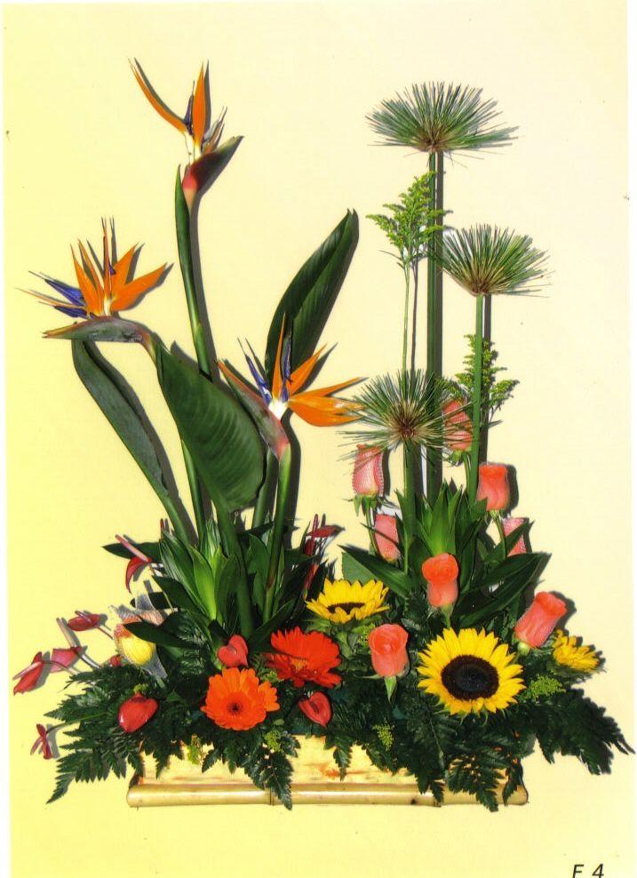 Jardinera-en-aves-del-paraiso-gerberas-anturios-girasol-rosas-y-papiros.-135.000-155.000-175.000
