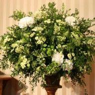 Micropompon hortensias verdes. 250.000 280.000 320.000 190x190 Tienda