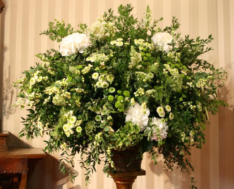 Micropompon-hortensias-verdes.-250.000-280.000-320.000