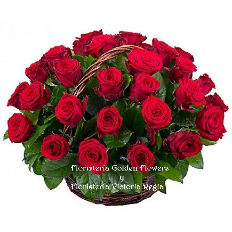 R 33 Canasta X 36 Rosas