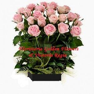 Rosa Rosada 300x300 Tienda