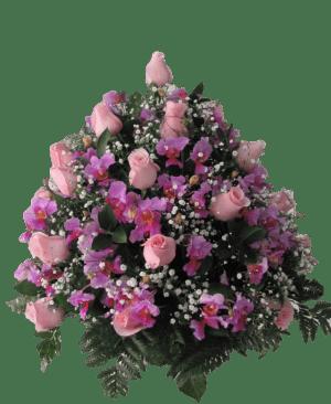 Rosas 17 300x366 Tienda