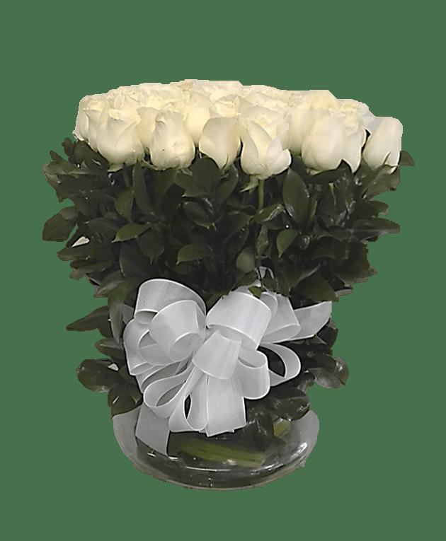 Rosas27