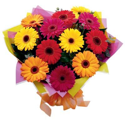 bouquet-en-gerberas-65.000-85.000-105.000