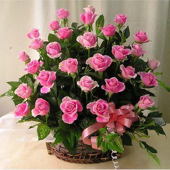 canasto en rosas 01360