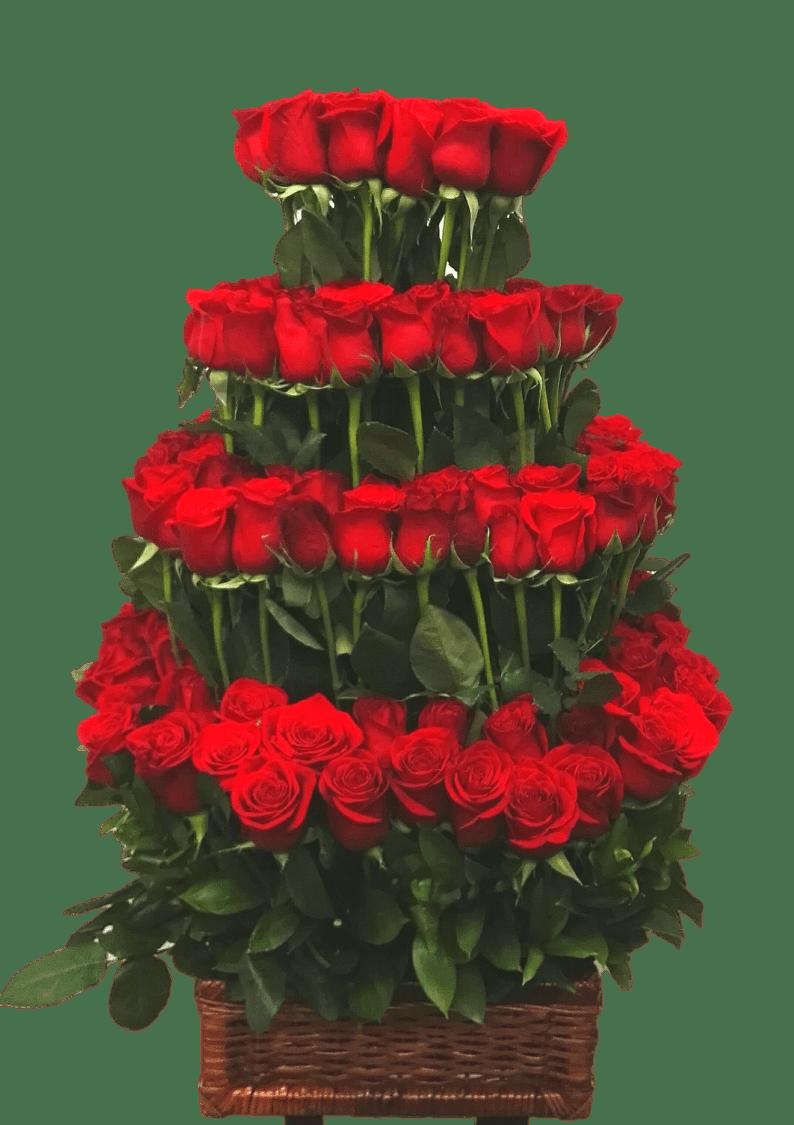 Rosas29