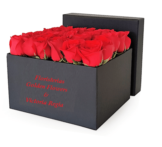 Caja Rosas CF 21