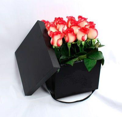 Caja Rosas CF 22