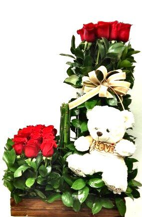 Rosas Con Oso Floristería Victoria Regia