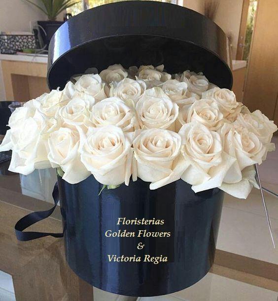 Caja Rosas CF 25