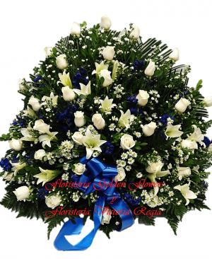 Imagen99 300x366 Tienda